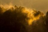Nebelschwaden bei Sonnenaufgang