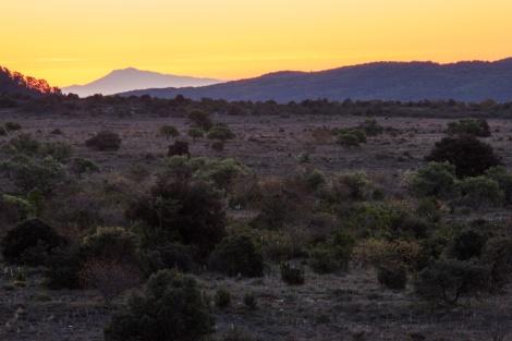 Morgendämmerung bei Perpignan, Cevennen
