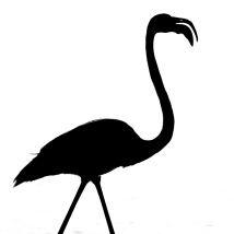 Flamingoscherenschnitt