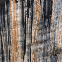 Ausschnitt einer Felswand